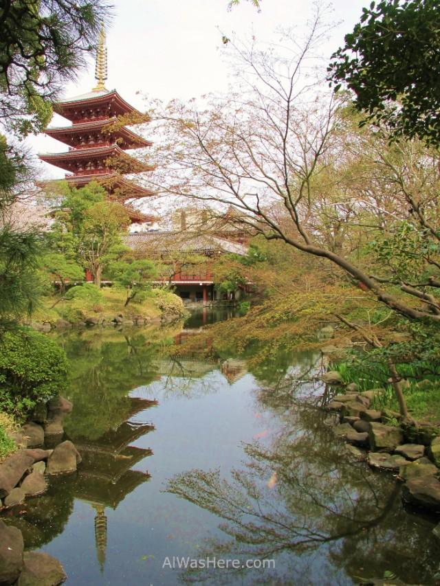 La pagoda desde el jardín del Demboin