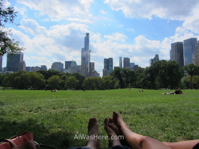 view-of-midtown-from-the-sheep-meadow