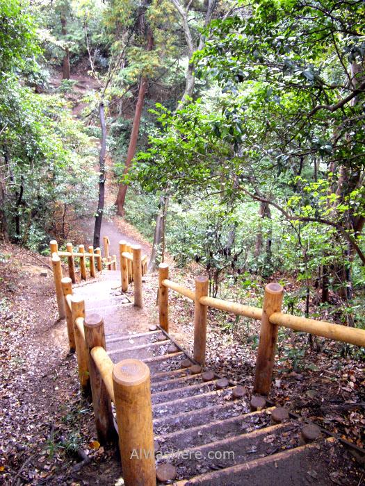 Sendero Daibutsu Trail Kamakura