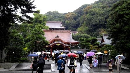 Hachimangu entrance, Kamakura