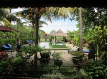 In low or middle season, a bungalow with this view can be found in Ubud for less than 20 € per night