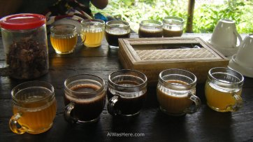 Three varieties of Kopi Luwak and two other infusions. You can try coffe for 3-5 $ per cup, a bargain compared to the 25 -30 $ you would pay in western countries.