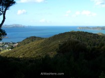 Hiking in the Bay of Islands