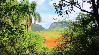 Viñales Valley, Cuba
