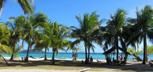 MALCAPUYA, BANANA, BULOG DOS ISLANDS 9. Malcapuya Island, Coron, Palawan, Filipinas. Philippines