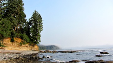 Coast between Sombrio Beach and Parkinson Creek, Juan de Fuca Marine Trail, VAncouver Island, Canada