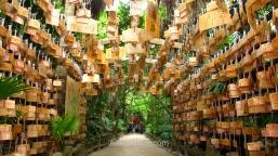 Lovely ema wooden tablets in Aoshima shrine