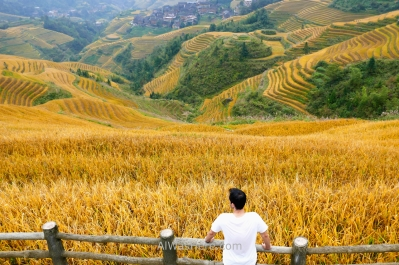 In Music from Paradise viewpoint, rice terraces in Dazhai, Longji, Longsheng, Guilin, China
