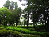 The garden in a a hotel-onsen in Kirishima Onsen
