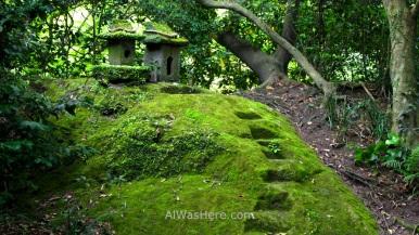 A mossy corner in Senganen Garden, Kagoshima