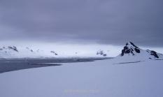 Half Moon Island, South Shetland Archipielago, Antarctica