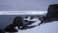 Antártida 1 Half Moon Island Antarctica Media Luna South Shetland Sur (3)