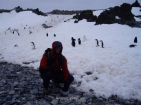 Antártida 2 Half Moon Island Antarctica Media Luna Alwashere