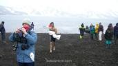 Antártida 4 Deception Island Decepcion Antarctica bañarse swimming Alwashere (2)